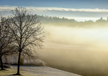 Ostrzeżenie meteorologiczne Nr 25 - gęsta mgła