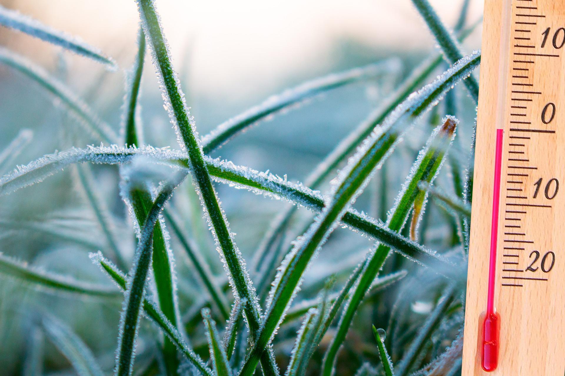 Ostrzeżenie meteorologiczne Nr 36, 37 – opady śniegu, przymrozki